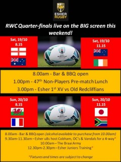 RWC Quarter-finals live on the BIG screen this weekend!