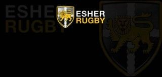 Message to Esher members from Ross Howard and Bob Stratton