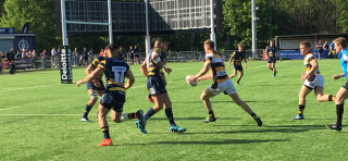 Esher Lions start their Sevens Season with a final at Rosslyn Park   Author: Mike Gadbury